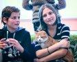 """""""НЕКО кафе"""": благотворительная выставка кошек"""